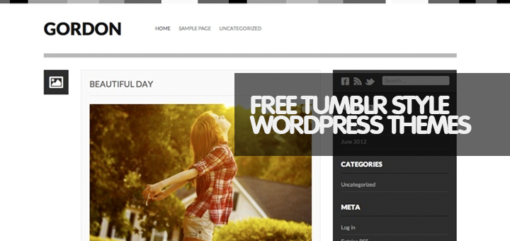 10+ Top Free Tumblr Style WordPress Theme