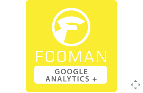 Google Analytics+ by Fooman