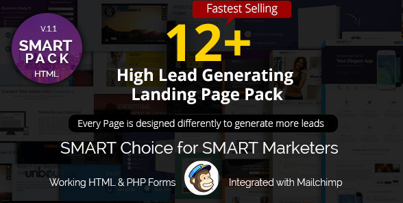 52+ Popular Responsive Marketing Landing Templates