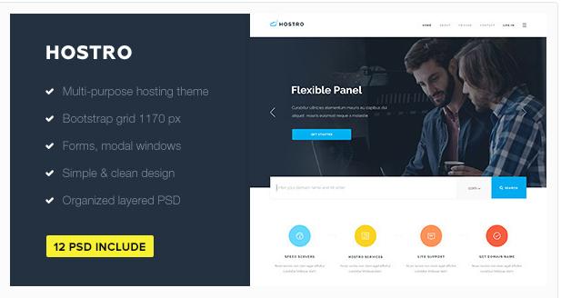 Hostro — Hosting PSD Theme