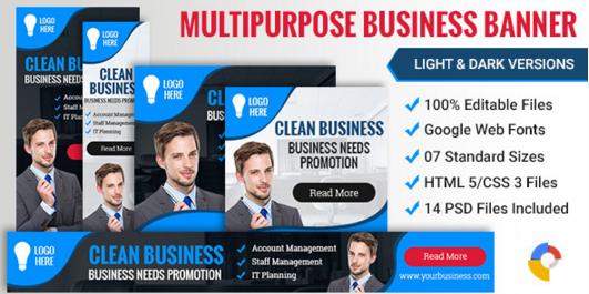 Web Design Business Banner 005 - 2 Variations