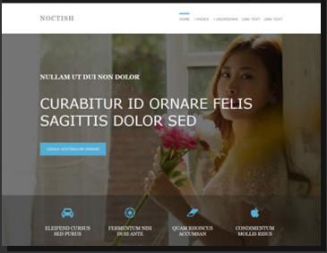 Noctish
